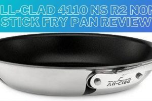 All-Clad 4110 NS R2 Non-Stick Fry Pan Review – An Ultimate Guide